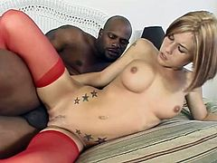 Hot and amazing interracial procedures are going on! Charming babe Allie gives a hot blowjob and then her sinful asshole gets balled!