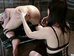 See the hot toying and strapon fucking Lorelei Lee is getting from Bobbi Starr in this lesbian femdom video.