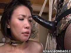 Sexy and tattooed Japanese mistress treat her slave girl hard and rough in this hot bdsm video.Watch how she fucks her mouth with big strap-on before she fucks her sweet wet hairy pussy hard.