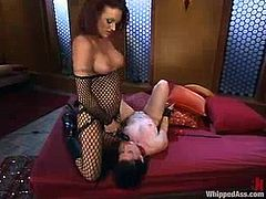 Monica Mayhem gets undressed and spanked by Ariel X. After that Monica also licks mistress' vagina and gets her tits tortured with claws. Of course she also gets toyed with a strap-on.