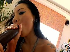See the alluring and wild brunette Japanese hottie Asa Akira getting her mouth and ass drilled balls deep into kingdom come by hung black stud.