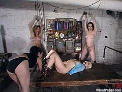 Jenni Lee, Lorelei Lee and two more girls are having BDSM fun in a basement. The mistress binds the bitches and plays with their tits and wet cunts.