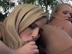 Skylar and Britney Young suck Marco outdoor
