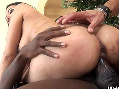 Annie moans with pain and pleasure as these guys rip her ass with their dongs. She's an Asian hottie and deserves a hard pounding! Watch her riding that big black cock and then how the other guy steps in and fills her anus with his dick. She's about to get cum filled in both her holes if she keeps it up like that!