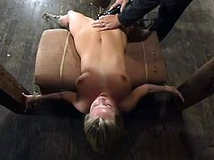 Her GPA is very low and it is time to torture her hard, in terms of punishment. So babe gets hogtied and something big pins her wet twat.