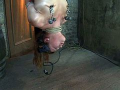 Petite brunette girl in stockings gets tied up and hanged up upside down. Then the master fixes claws to her nipples and toys the pussy with a vibrator.