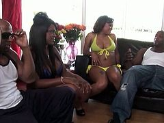 Cum inside and watch as two couples fuck hard one next to the other. Thick black sluts give head and the open their thick legs to ride those bog black cocks hard and deep, wanna see?