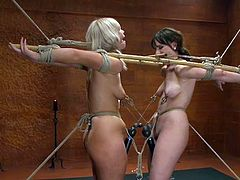 Brunette Dana Dearmond and blond Tara Lynn Foxx lick each others pussies. These bound girls also get clothespinned and toyed by their master.