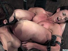 Claire Dames and Wenona get restrained with special BDSM device. One of the chicks gets her ass penetrated with huge dildo.
