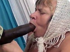 Watch this granny sucking on this guy's big black cock before her fat sloppy pussy being drilled by this monster cock.