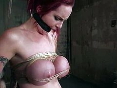 Busty redhead bitch Mz Berlin lets some guy tie her up in a basement. The dude binds the chick and does all what he wants with her tits and pussy.