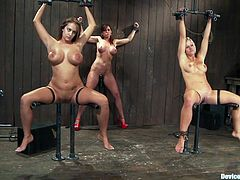 Christina Carter and Trina Michaels and a friend are getting dominated in this bondage BDSM video packed with hot kinky lesbian action.