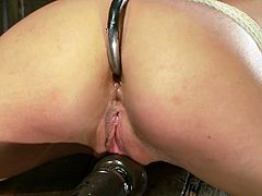 Gorgeous girl gets her tits tortured with claws. After that a guy shoves a dildo in her ass and toys her pussy with a vibrator.