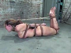 Smoking hot brunette chick gets bound by two dudes. She gets her tits twisted so that become purple. Later on she gets her wet pussy torn up with big dildo.