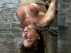 Gia Dimarco gets gets tied up to the wooden post upside down. Her Master fixes weights to her nipples and gets his dick sucked. Later on he also toys her vagina with a vibrator.