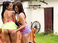 Press play on this hot scene where these naughty ladies have a great time pleasing one another and giving you a boner in an outdoors lesbian scene.