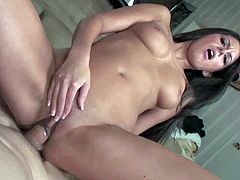Shaved pussy brunette Nikki Daniels riding dick