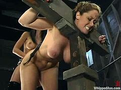 Submissive Shy Love gets tied up and gagged in a barn by Christina Carter. After that she gets whipped and toyed with a strap-on from behind.