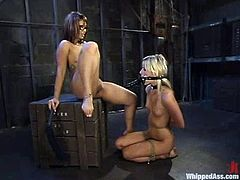 Sexy Asian bitch DragonLily is gonna teach slim blonde Courtney Simpson a good lesson. Lily binds and whips Courtney and then makes her suck her strapon.