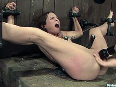 Appealing brunette Amber Rayne is having fun with some guy in a detestable basement. The dude chains the sweetie and destroys her engaging asshole with a dildo.