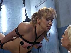 Today is the only day, when you find a hot BDSM femdom porn video, in which one sex mistress is torturing the other one. So hot!