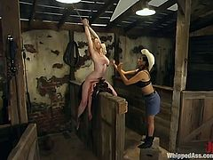 What we got here is Darling and Mika Tan, two luscious hotties that are going to go a bit fetish in the barn! Real hot BDSM to witness.