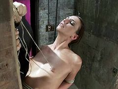 Slim brunette girl gets tied up to a wooden post her masters. Later on she also gets her tits tortured with ropes.