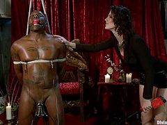 Take a look at this bondage video where this brother is tortured by his sexy mistress Bobbi Starr as you take a look at her sexy body.