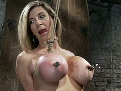 Isis Love is going to hurt big-breasted blonde milf Sara Jay. She attaches clamps on her huge boobs and then rubs her cunt with a vibrator.
