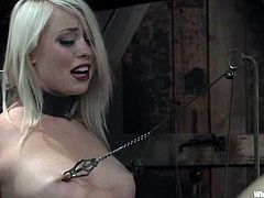 Apart from all the crazy bondage action going on in this lesbian video, there's also wicked toying fun and more to enjoy.