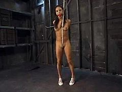 What a petite and sexy hottei Nadia Styles is! Babe is being treated so fucking hard! She loves it in pain and her master belts her on the wall to give her pain!