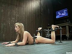 Charming blonde Tara Lynn Foxx lets some guy put her into fetters in a basement. The dude toys Tara's amazing coochie and enjoys the way she moans.