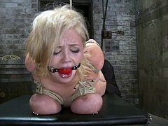 What a charming and luscious babe Katie Kox is! Babe is slaved and she is going to feel so damn fucked up! Man, it's just wild!