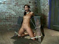 Tied up girl gets undressed and tortured with bondage devices fixed to her titties. Then the master also chokes Skin and toys her pussy.