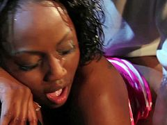 Smoking hot black babe Jada Fire with round bouncing ass gets wet honey pot pounded by randy pale Herschel Savage and sucks his cock until he cums on her pretty face.