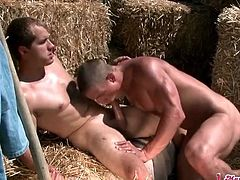 Farm boy sucks dick and has anal sex outdoors