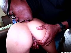 Raven haired sexploitress Nikki Daniels gets her ass eaten. Then she gets on her knees and treats foot long BBC with sloppy blowjob and gets her hairy cunt fucked missionary style.