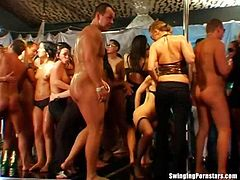 Ultra sexy  club wenches sucking and fucking thick cocks in public
