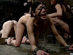 Two submissive girls get dominated by two other chicks