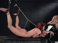 Salacious dominatrix Aiden Starr ties her slave AnnaBelle Lee and tortures the bitch. Then Aiden plays with Anna's cunt and stuffs it with a hook before fucking it with a dildo.