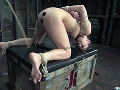 Nice Satine Phoenix gets tied up in a barn. She gets tortured with clothespins and then hot with electricity.