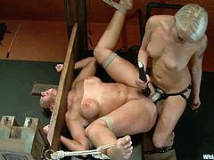 Desirable siren Kelly Divine is going to live through something hardcore and horrible! She gets tied up and tortured so wicked hard.