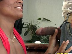 Gorgeous Brazilian chick with big ass gives a blowjob in a billiard hall. Then she gets fucked in her pussy and ass on the pool table.