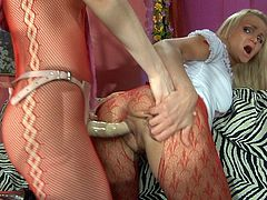 Famous Pantyhose1 shows horny collection of Stocking Sex obscene movs