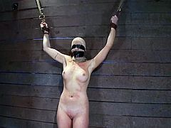 Some real BDSM session is going to take place with Lorelei Lee and you will witness how tough this bitch is! She stands it all, man!