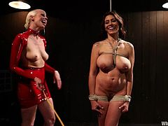 Two juicy and kinky chicks are having some BDSM fun! Lorelei Lee, the smoking hot mistress in red latex suit is humiliating her slave Andy San Dimas!
