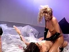 Bosomy bitch Debi Diamond and her lesbian girlfriends organize wicked orgy. Four busty well stacked bitches get covered with oil and ardently lcik each other's delicious soaking cunts.