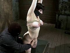 Curvaceous brunette girl gets tied up and gagged by her master. Later on he fixes clothespins to her tits and toys the pussy.