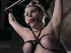 Gorgeous and filthy honey Charlotte Vale is going to be damaged by Claire Adams in this insane BDSM session! Honey loves some pain!