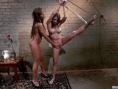 Pain is what drives Nika and she is ready to give it to this divine and smoking hot babe Chanel Preston! honey ties her up and fucks with toys!